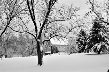 Old barn on a snowy day - finding great website photography